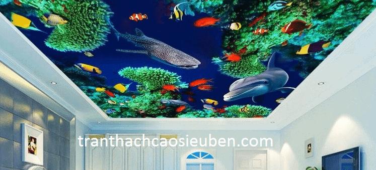 Kiểu dáng 3D biển đại dương