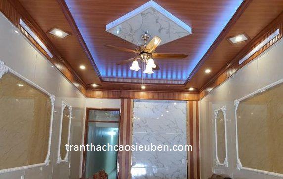 Vật liệu làm trần nhà tốt nhất 2